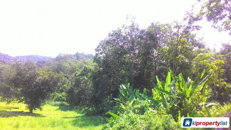 Picture of Agricultural Land for sale in Dengkil