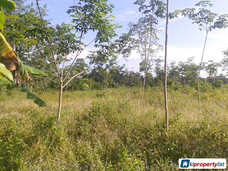 Picture of Agricultural Land for sale in Alor Setar
