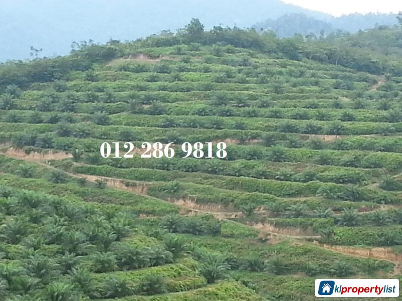 Picture of Agricultural Land for sale in Seremban