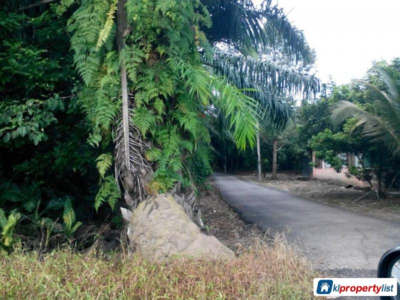 Picture of Agricultural Land for sale in Muar