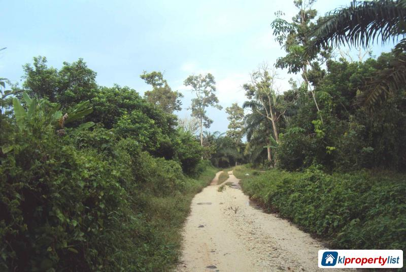 Agricultural Land for sale in Muar in Malaysia