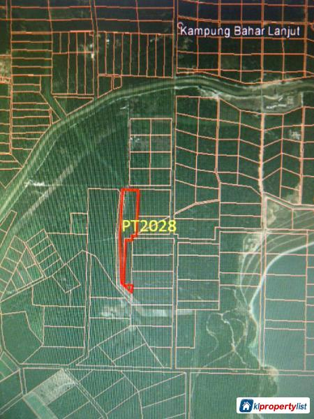 Picture of Agricultural Land for sale in Banting