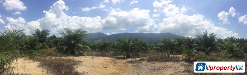 Picture of Agricultural Land for sale in Ipoh