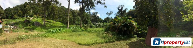 Picture of Agricultural Land for sale in Georgetown