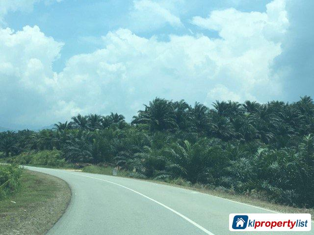 Picture of Agricultural Land for sale in Kota Kinabalu