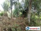 Agricultural Land for sale in Ipoh