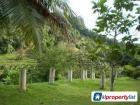 Agricultural Land for sale in Bukit Mertajam