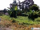 Residential Land for sale in Muar